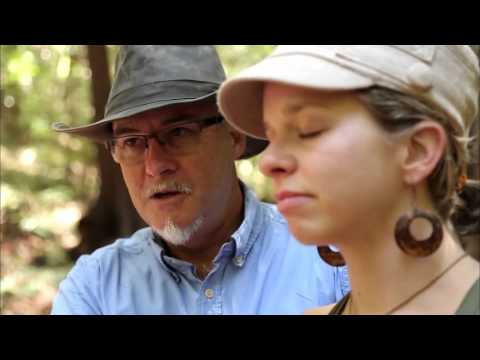 Forest Therapy Documentary, United States Segment