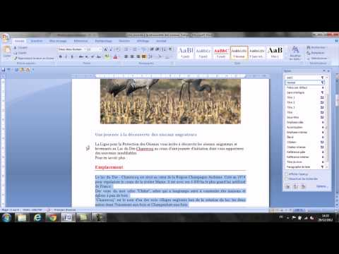 Comment créer des styles et les documents longs sur Word