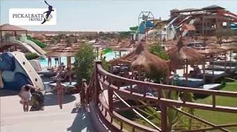 Popular Videos Jungle Park Resort Room Youtube