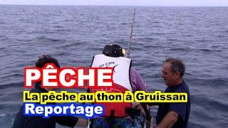 PÊCHE : La pêche au thon à Gruissan