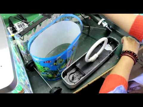 Changing Tube In Lightahead Ocean In Motion Aquarium