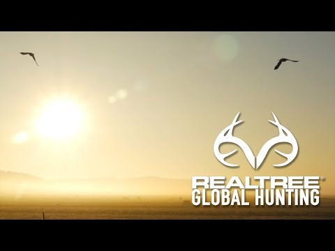 Goose Shooting in South Africa
