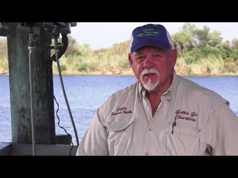 How to Clean a Speckled Trout