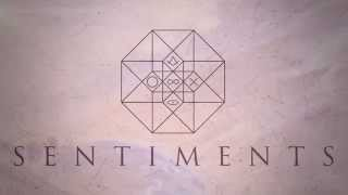SENTIMENTS - Indigo Children