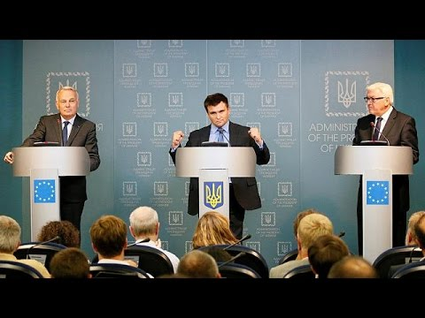 Ukraine will observe Donbass ceasefire, says German FM