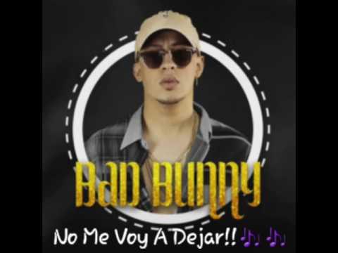 Bad Bunny Ft Tali - ( No Me Voy A Dejar )