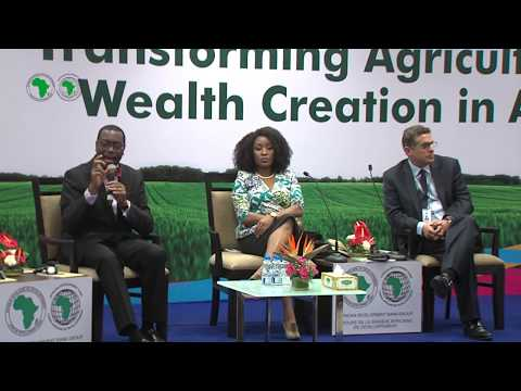 AM2017 - INDIA : Transforming African Agriculture into a Lucrative Business