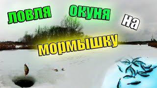 Ловля Окуня Зимой на Мормышку Зимняя рыбалка 2021