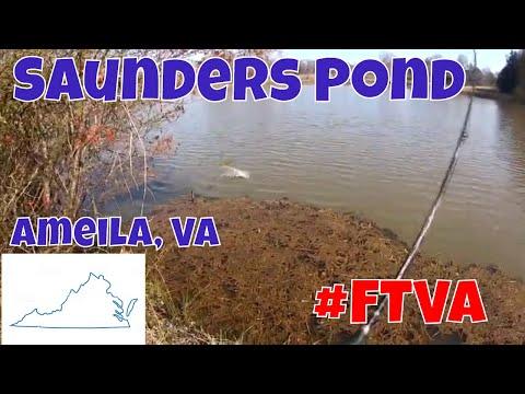 Saunders Pond Amelia, Virginia   Fishing The Treasures Of Virginia