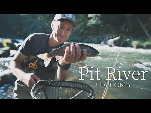 Fly Fishing The Pit River For Trout In Section 4