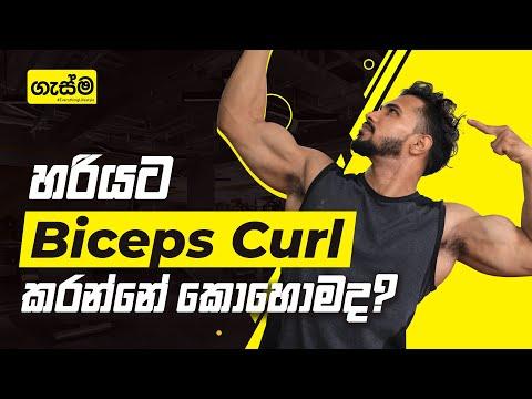 Arm Workout | හරියට Biceps Curl කරන්නේ කොහොමද?
