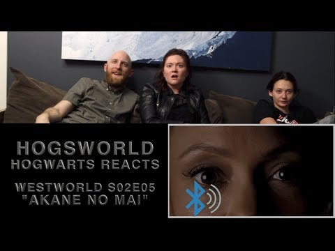 Hogwarts Reacts: Westworld S02E05