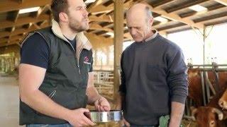 Promotion du contrôle de performance Bovins viande Charente-Vienne