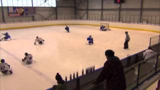 Karlovy Vary vs HC Sparta Praha sledge hokej