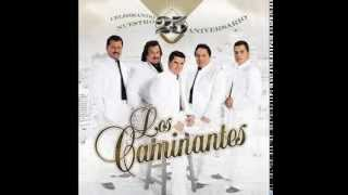 LOS CAMINANTES   MIX ROMANTICO   SOLO EXITOS low