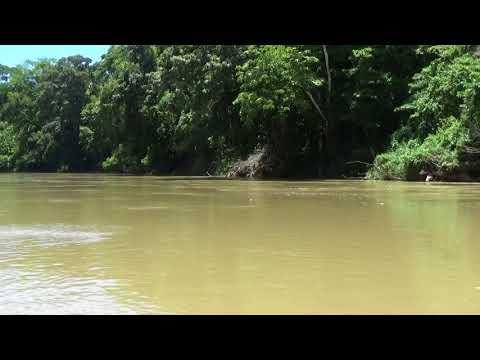 River Boat Journey 2