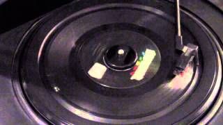 Just A Little Too Much - Ricky Nelson (45 rpm)
