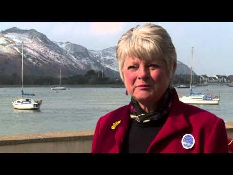 Talking Head: Wales Official Tour Guide Association