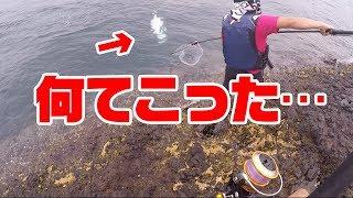 【パニック】磯からマグロが釣れた?爆釣ショアジギング編#3
