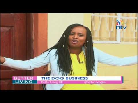 Understanding the ins and outs of dog breeding and selling in Kenya