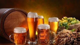 Домашнее пиво из экстракта Beervingem.