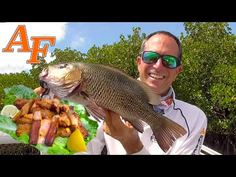 Catch And Cook Fish & Chips W Tackle Club Fishing Challenge EP.463