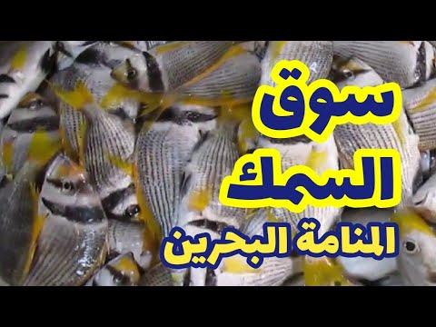 Manama Central Market, Bahrain-2 fish market سوق المنامة المركزي
