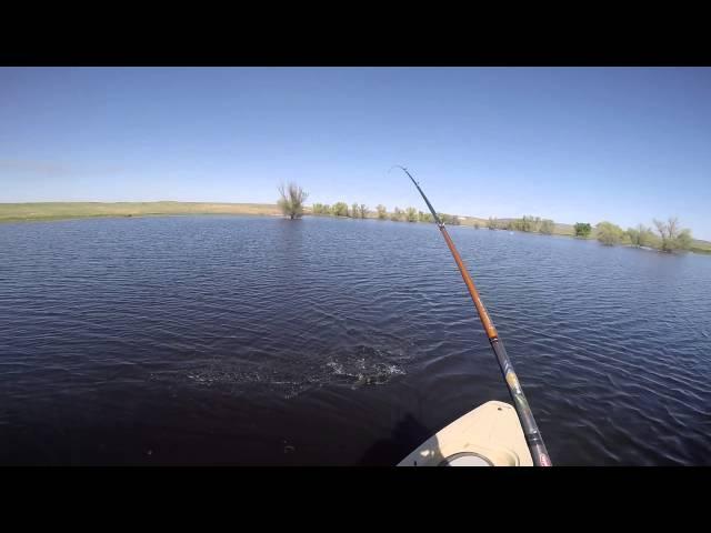 Kayak Bass Fishing on the Freedom Hawk Pathfinder