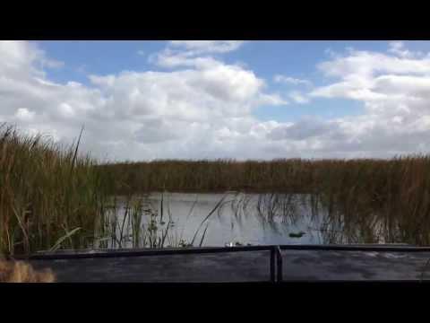 рыбалка на лепельских озерах видео