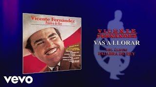 Vicente Fernández - Vas a Llorar (Cover Audio)