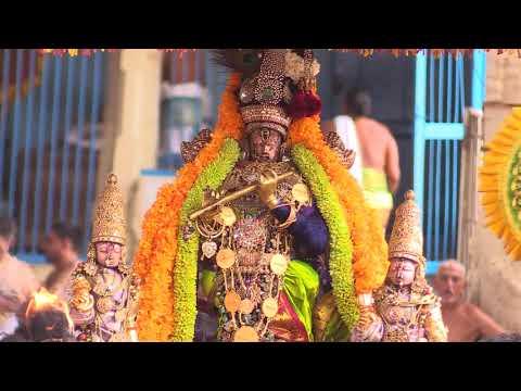 Kanchi Varadarajan - Maanasa Sancharare  - Sama_Semmangudi Srinivasaa Iyer_6m 03s