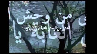 كلمات اغنية افافا ينوفا