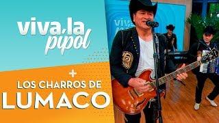 Los Charros de Lumaco cantaron sus mejores éxitos e hicieron bailar en Viva la Pipol 1
