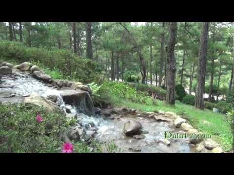 Suối Vàng Đà Lạt - Goldern Valley