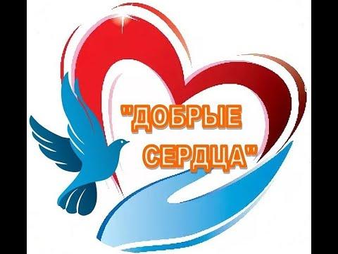"""Фильм о работе волонтерского отряда """"Добрые сердца"""""""