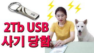 2Tb USB 뻥튀기 사기 당함! (I got a 2T…
