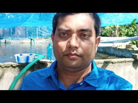 सीमेंट टैंक में मछली पालन लाभ और नुकसान
