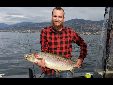18lb 36in Rainbow Trout - Okanagan Fishing At Its Finest