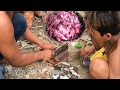 Amazing Cooking Style-Frog Recipes-Fried frog in my Village-Traditional food in Cambodia #48