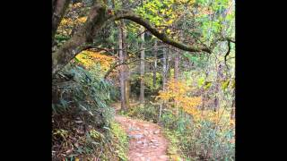 Momijigari 紅葉狩 Hiking from Magome to Tsumago 馬籠、妻籠 by Kari Gröhn karigrohncom