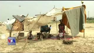 ملیریا کا علاج مچھروں کوملیریا سے بچا کر