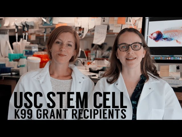 USC Stem Cell scientists Lindsey Barske and Joanna Smeeton win NIH Pathway to Independence awards