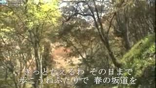 水沢明美 - 春の坂道