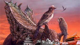 《地理中国》 龙鸟谜题(上)鸟类的祖先是谁?它们是如何出现在这个地球上的?20181214 | CCTV科教