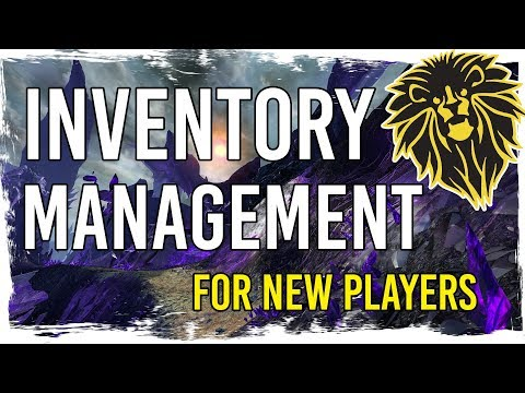 Guild Wars 2 - Inventory Management for New Players thumbnail