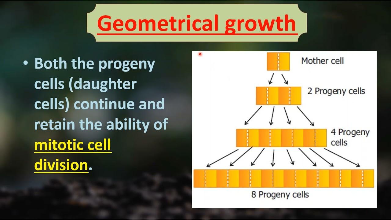 I PUC | BIOLOGY | Plant growth and development - 4