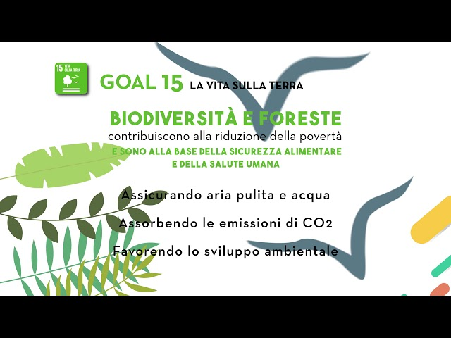 SDG Goal 15: La vita sulla terra