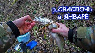 Рыбалка на реке Свислочь Ловля щуки в январе