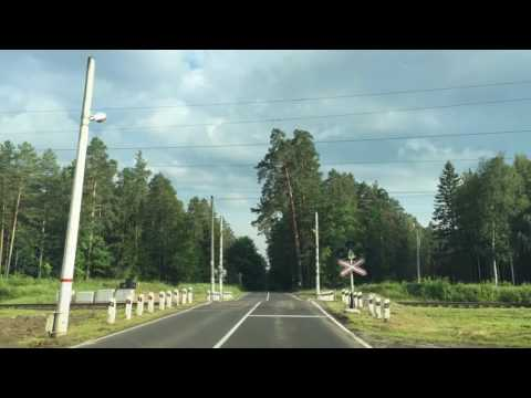 Путешествие в Брянск Брянский Лес 30 км до Брянска