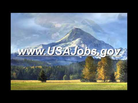 Temporary Hiring with the U S  Forest Service